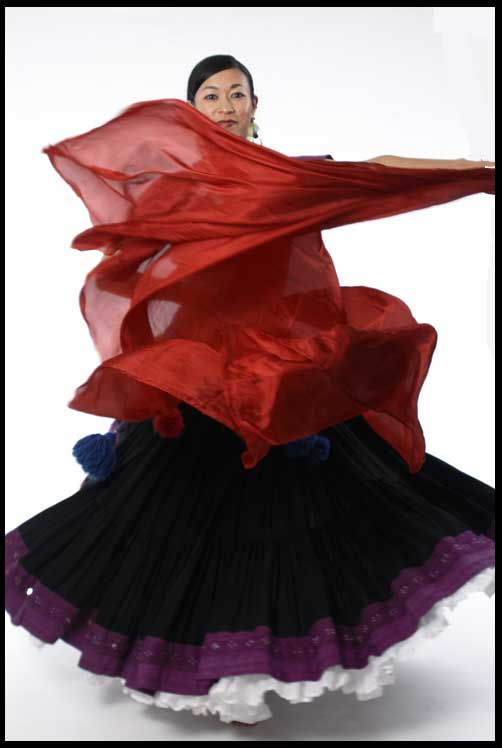Flying Skirts Tribal Belly Dance Costumes Silk Veil
