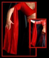 Silk Sleeves-2
